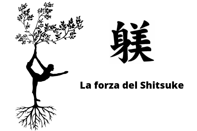 La forza del Shitsuke